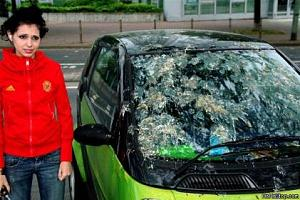 Click image for larger version  Name:Bird_Poop_Attack.jpg Views:85 Size:29.5 KB ID:3216